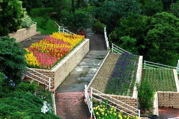 和歌山県植物公園緑花センター _b0093754_23482164.jpg