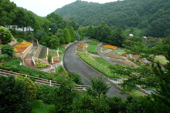 和歌山県植物公園緑花センター _b0093754_2348684.jpg