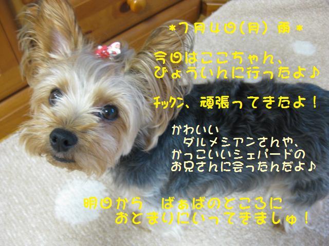 f0143386_2203565.jpg