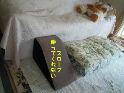 c0166622_856621.jpg
