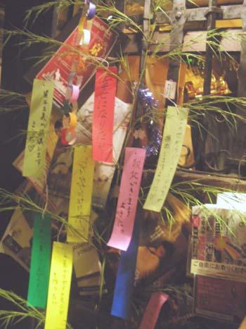 笹の葉サーラサラ♪_e0068626_14202610.jpg