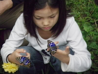 オオムラサキの放蝶&夏の仕事いろいろ&青空カフェ_c0167329_735532.jpg