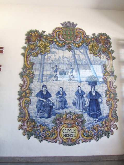 Madeiraへの旅~_a0138438_8221312.jpg