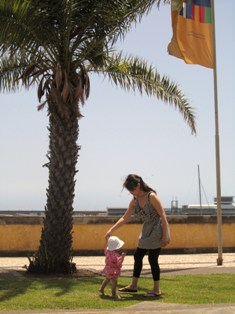 Madeiraへの旅~_a0138438_8284160.jpg