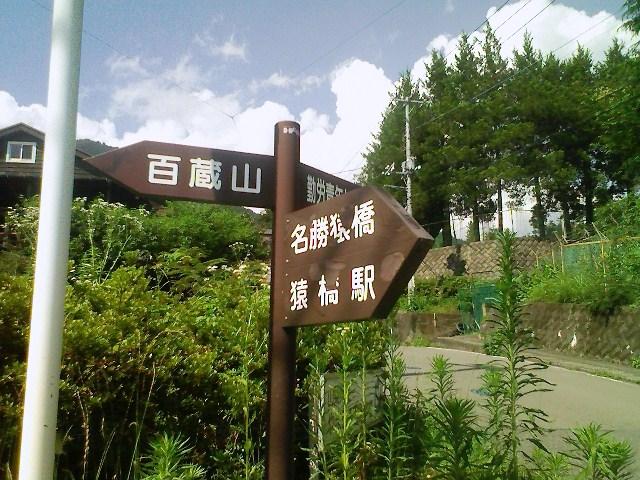 2011/07/05 百蔵山 大同山_d0233770_22134930.jpg