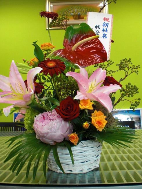 またまた綺麗なお花が届きました。_d0174072_15552785.jpg