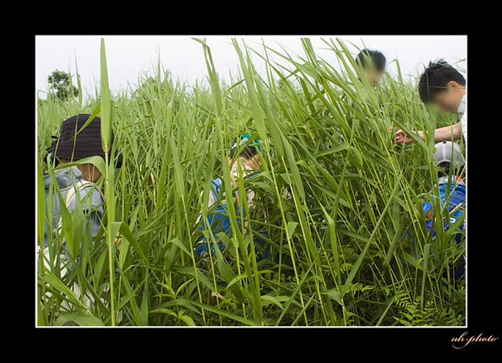 札幌市内に残る非常に珍しい篠路福移湿原_b0181889_6145940.jpg