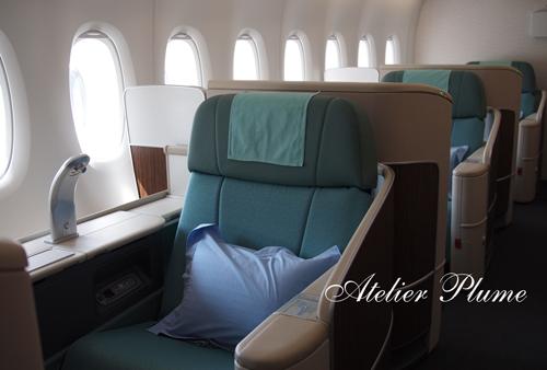 韓国旅行 エアバスA380_e0154202_21394658.jpg