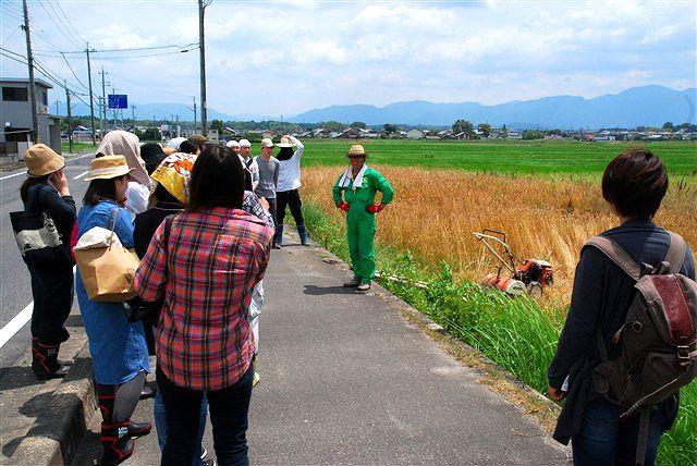 日野町 小麦ワークショップ ~最終章~_c0116714_2132670.jpg