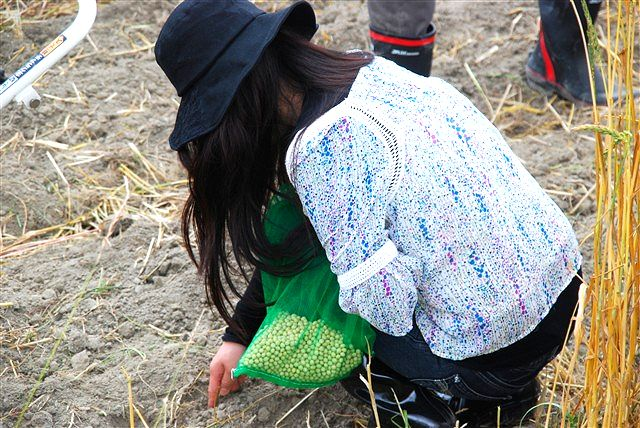日野町 小麦ワークショップ ~最終章~_c0116714_239818.jpg