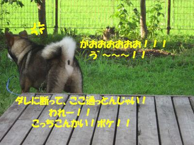 f0143123_1946928.jpg