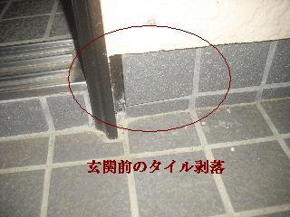 f0031037_1951319.jpg