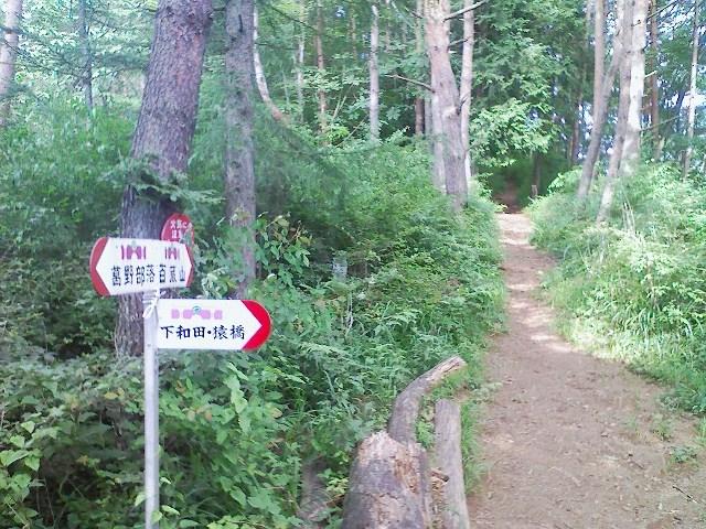 2011/07/05 百蔵山 大同山_d0233770_6324235.jpg