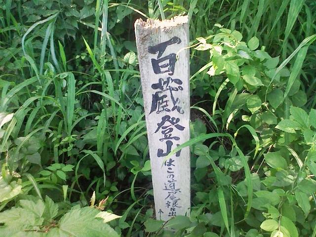 2011/07/05 百蔵山 大同山_d0233770_6521539.jpg