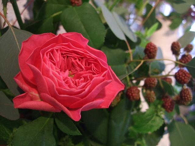 オークリーフ花の教室(宇田さんの作品)_f0049672_16384821.jpg
