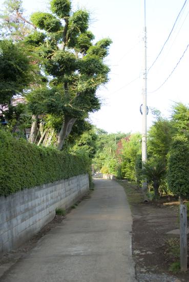 夏・町・風・情_b0194880_1314843.jpg