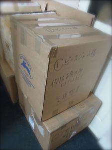 被災地から届いた写真&第九便発送_e0030586_20553894.jpg