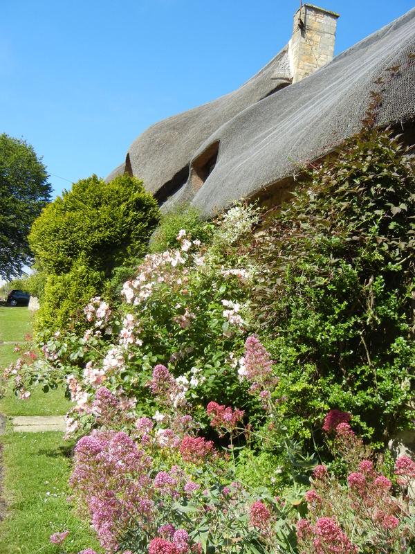 7月7日(木)イギリス旅行④コッツウォルズ散策とヒドコットガーデンへ_f0060461_21354562.jpg