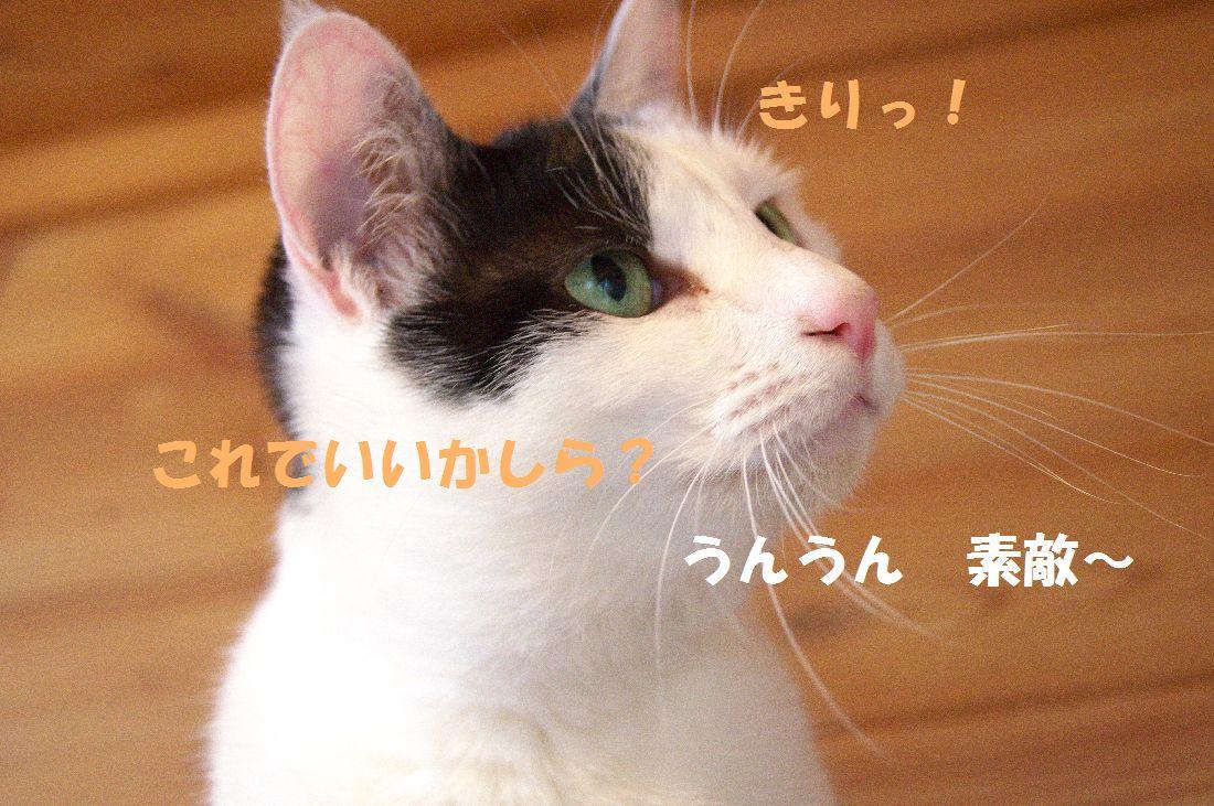 f0197682_23594158.jpg