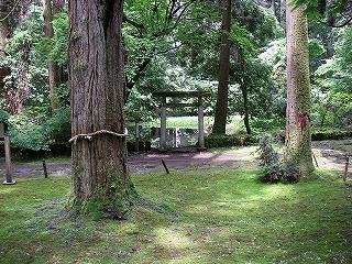 越前旅行(その3:平泉寺白山神社)_e0064783_12552472.jpg