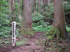 越前旅行(その3:平泉寺白山神社)_e0064783_12562611.jpg