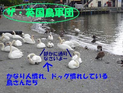 a0154801_18154966.jpg