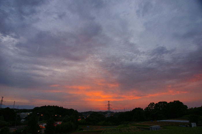 (たぶん)梅雨明けの夕_e0077521_22271529.jpg