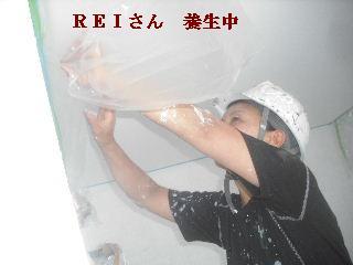 塗装工事3日目_f0031037_20143532.jpg