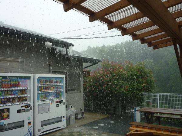 雹襲来_a0157156_10381359.jpg