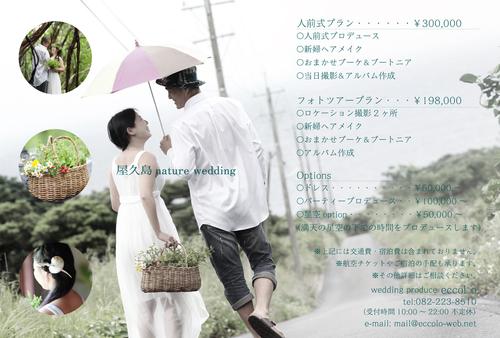 屋久島ウェディング始動!!_a0186061_23245237.jpg