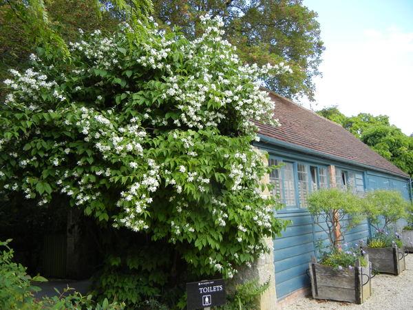 7月7日(木)イギリス旅行④コッツウォルズ散策とヒドコットガーデンへ_f0060461_8175120.jpg