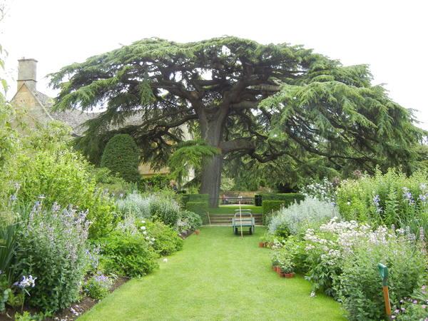 7月7日(木)イギリス旅行④コッツウォルズ散策とヒドコットガーデンへ_f0060461_8375644.jpg