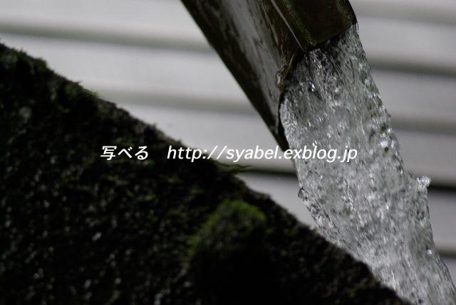 c0153764_19301364.jpg