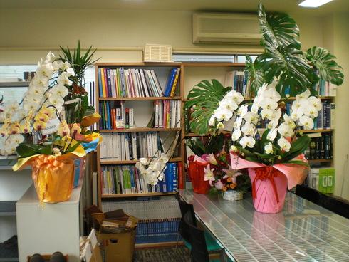 設計事務所からお花やさんへ_d0174072_815065.jpg