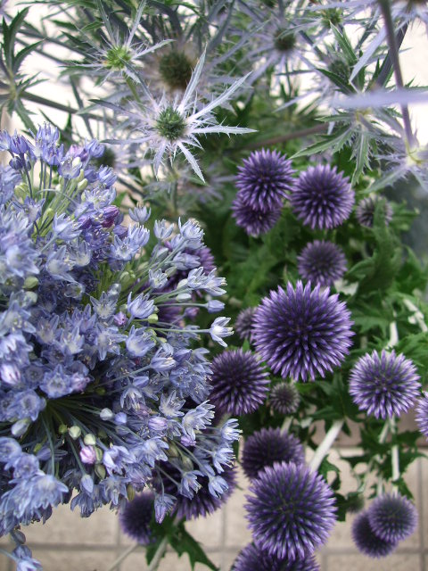 オークリーフ(サマーグリーンと山の花たち)_f0049672_16515030.jpg