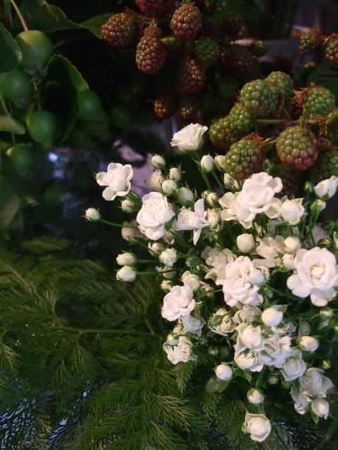 オークリーフ(サマーグリーンと山の花たち)_f0049672_1715660.jpg
