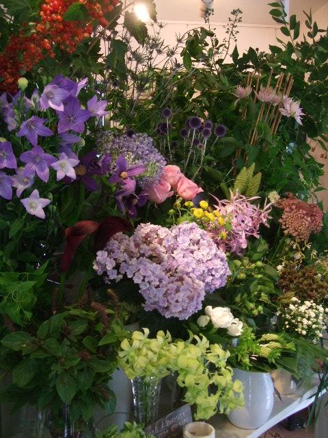 オークリーフ(サマーグリーンと山の花たち)_f0049672_1721659.jpg
