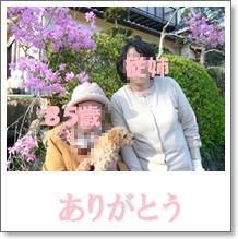 b0167519_01038.jpg