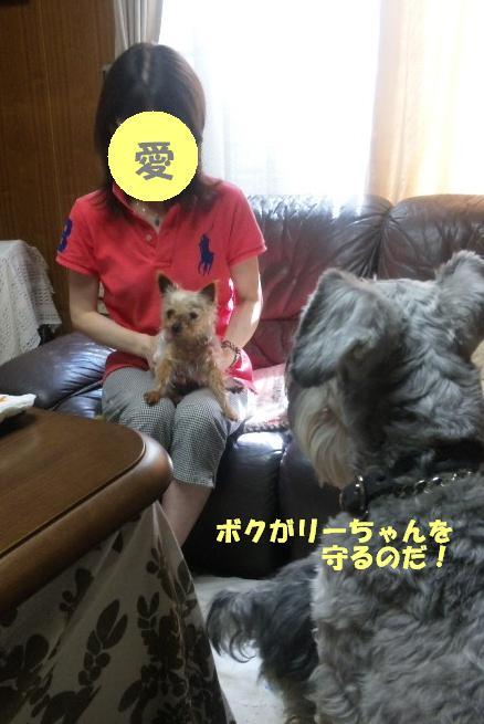 b0207320_2229299.jpg
