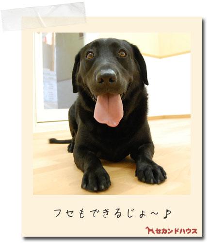 ホテルの様子_e0236430_18553924.jpg