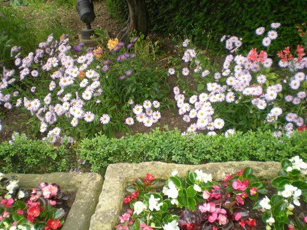 7月9日(土)イギリス旅行④ウィンチクム村~シェイクスピアの生家へ_f0060461_22232720.jpg