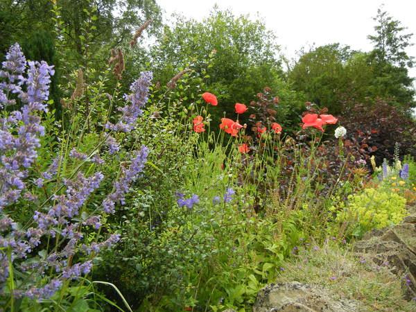 7月9日(土)イギリス旅行④ウィンチクム村~シェイクスピアの生家へ_f0060461_22334110.jpg