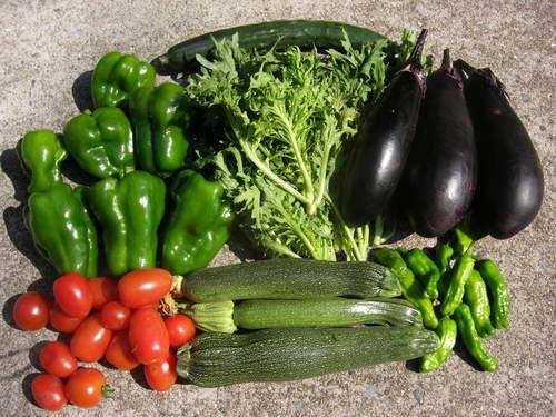 梅雨が明けて、夏野菜がどっさり_c0053863_17364395.jpg