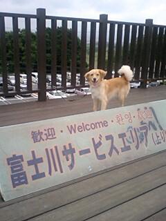 富士川SAに到着♪_c0196992_10243589.jpg