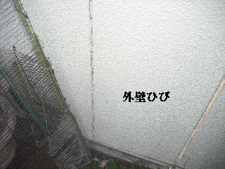 f0031037_189260.jpg
