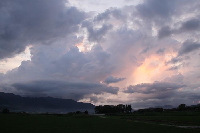 梅雨があけたね_f0159642_0171365.jpg