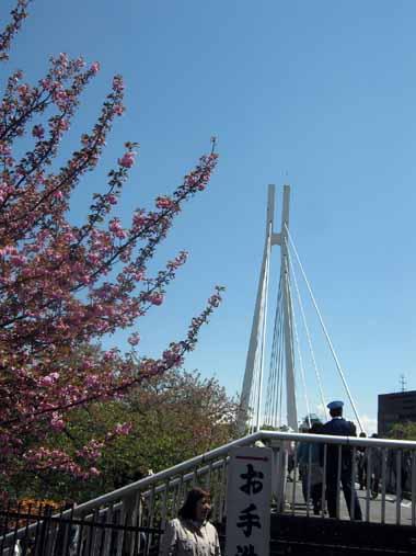 4/19.大阪造幣局通り抜け2._d0136282_16234588.jpg