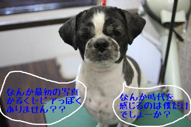 b0130018_9525944.jpg