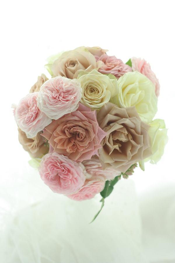 堀木園芸様のバラたちで _a0042928_18483817.jpg