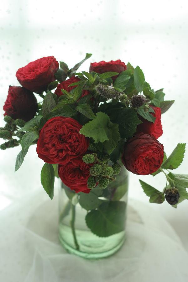 堀木園芸様のバラたちで _a0042928_18484970.jpg
